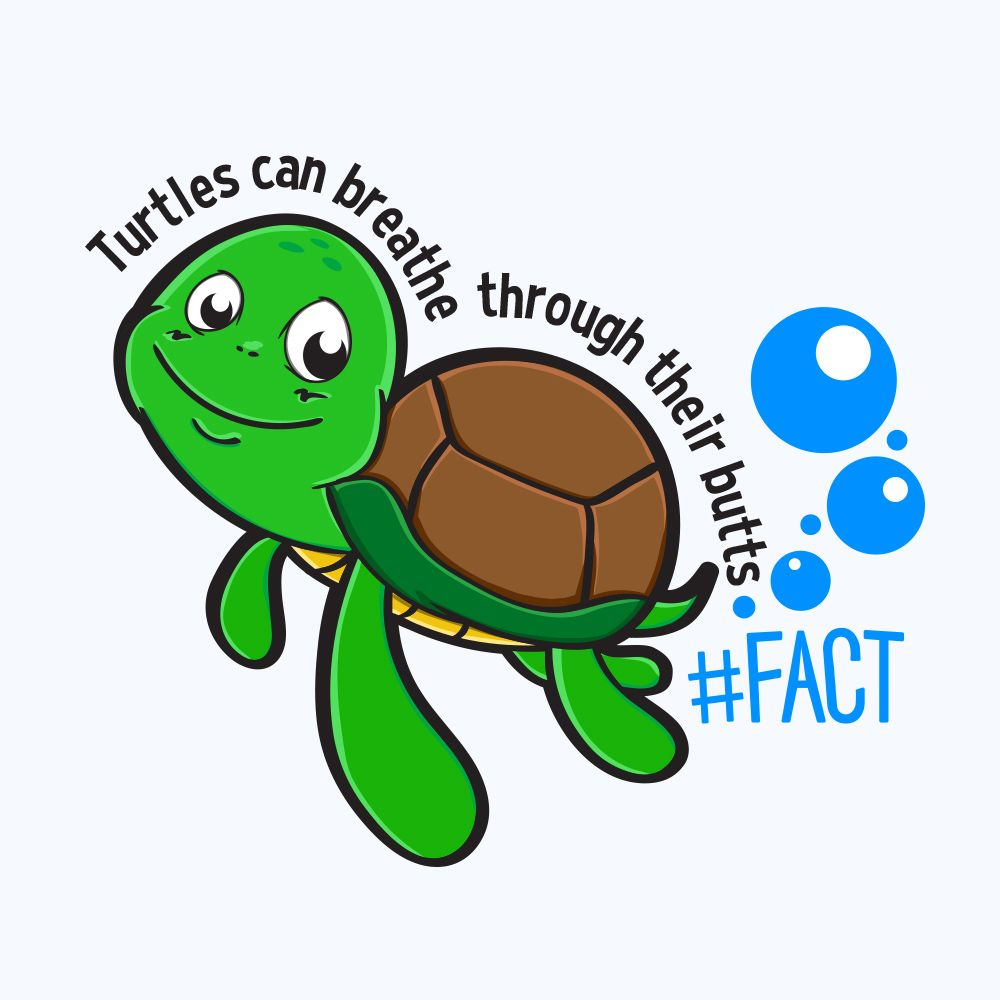 Turtle #FACT T-Shirt